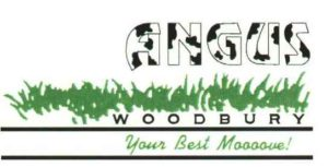The First logo, adding color in 1990 was a huge thing! Angus Woodbury Real Estate in Chicago's Western Suburbs